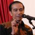 Pilkada DKI 2017 Nanti Jokowi Akan Gunakan Hak Pilihnya Di Gambir