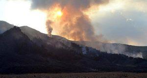 Terjadi lagi, Kini si Jago Merah Menghanguskan 75 Hektare di Bromo